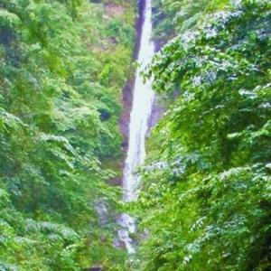 山走る滝一筋のフリーダム