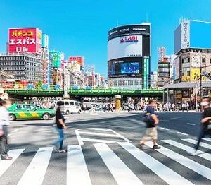 新宿の影さえ重き晩夏かな