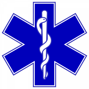 フランスのパトカー・救急車・消防車のサイレンの音
