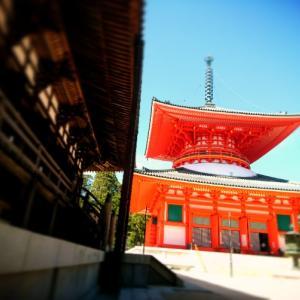 一時帰国のハイライト:高野山への旅
