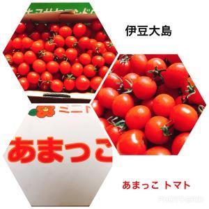 ★伊豆大島のトマト あまっこ ★デザート?★ダイビング★