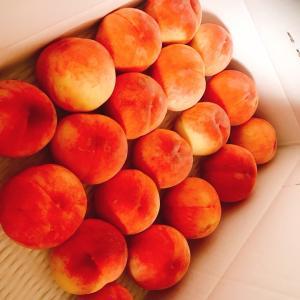★大好きな果物は?★