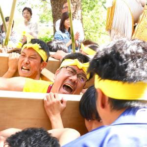 最高の本宮!!やっぱり祭りは継承せなアカン・・・!!