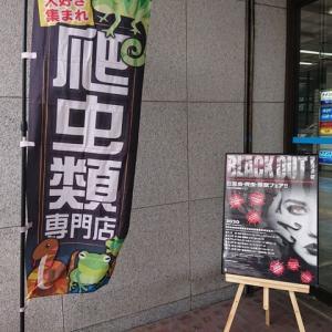 BLACK OUT!2020横浜に行ってきました