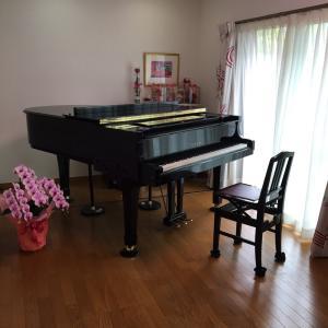 約200名の生徒さん達をピアノ指導させていただいた経験を大切に
