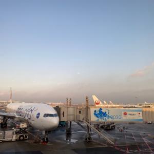 羽田空港からちょっくら✈︎