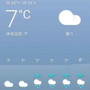 雨だ〜⋆☂︎*̣̩ 大丈夫かなぁ