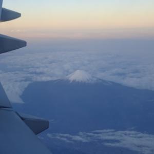富士山\( *´ω`* )/