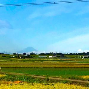 西に富士 東に筑波 秋ヤマベ、の巻