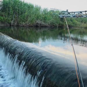 ノー残業デーは川で残業、の巻