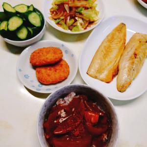昨日の夕飯&お弁当☆