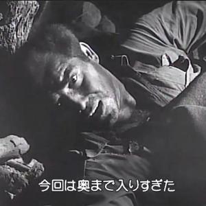 he entrado demasiado adentro 深入り(El gran carnaval 1951 Ace in the Hole 地獄の英雄) / toros desde LA TORRE DE ESTEBAN HAMBRÁN (Toledo) 本日の闘牛中継