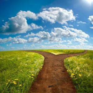 あなたの道が選べる方法✨