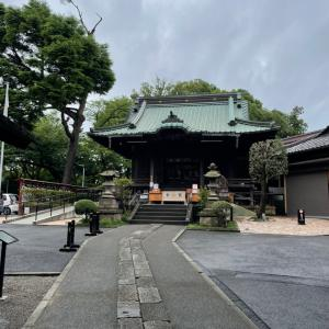 サヤマヤシオリ作戦初日