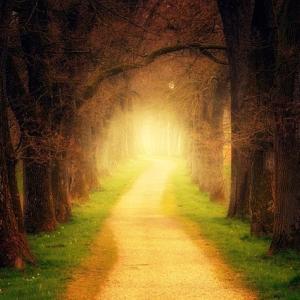 西洲 修行の道 24 (幸福になる道も幸福)
