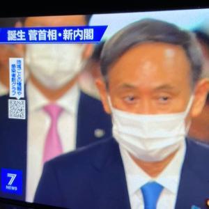 菅新政権発足