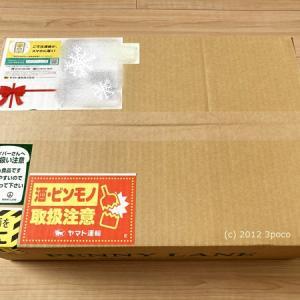 【福袋2021】ペニーレインのハッピーボックスが届きました!今年の気になる中身は…!?