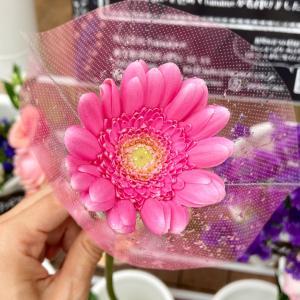 【日常】1本110円で買える「チャンスフラワー」で、お家に癒やしと華やぎを!