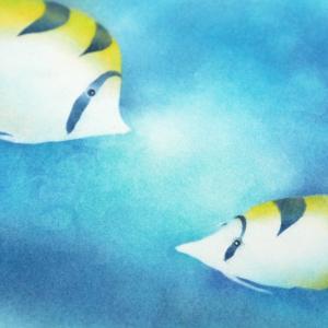 パステルチョウチョウウオ 水の世界と魚たち