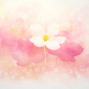 フラワーパステル画ファーストステップ 心に小さな花を咲かそう♡