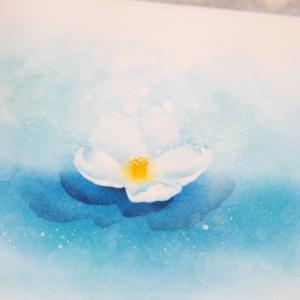 1輪のお花から広げていける フラワーパステル画