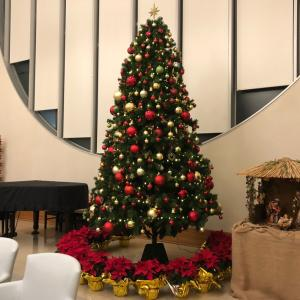 初台リハ  院内のクリスマス