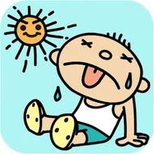 漢方の考え方、夏の暑さと「暑邪」「湿邪」
