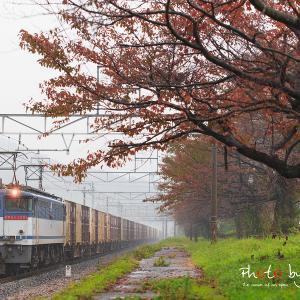 2013/11/10 東海道本線 5087レ
