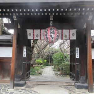 第735回 雨宝院はまだつぼみ~上京桜散策~その5