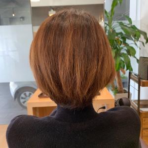 クセ毛/ハンサムショート/ポイントカラー