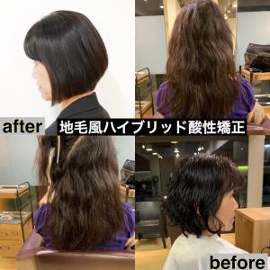 劇的くせ毛before→after/バッサリカット