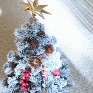 カリフォルニア シリコンバレー、ベイエリアのクリスマス♪