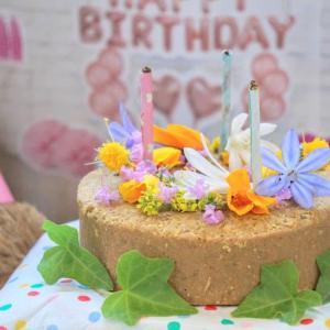 カリフォルニア・りすの誕生日パーティー  ベイエリア/シリコンバレーブログ