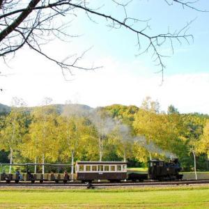 森林鉄道の秋 2