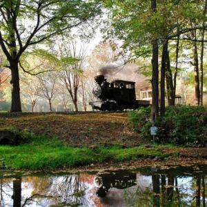 森林鉄道の秋 3