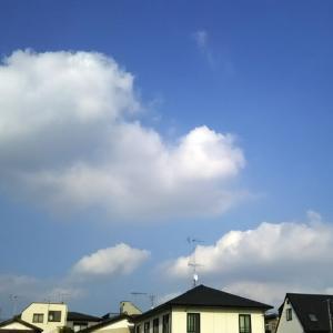 今年は貴重な夏の晴れ☀️と、さいたま市の周りの夏景色。❂(´∀`*)❂♪*゚