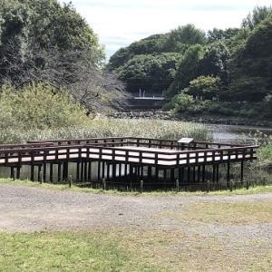 水車もある泉の森散策・今週の記録