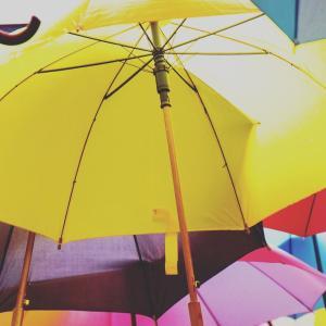 コンビニに一日置き忘れた傘がそのままあったー!