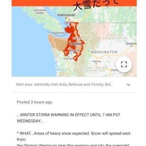 Winter storm警報【大雪かもよ】