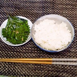 ご飯と食べたら止まらない!合法ハーブ『SHISO』2019バージョン