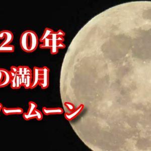 2020年5月の満月!フラワームーン