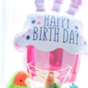 きゅるちゃんのお誕生日♡