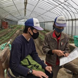 工賃支給日でした! 地域貢献型農福連携請負作業 など