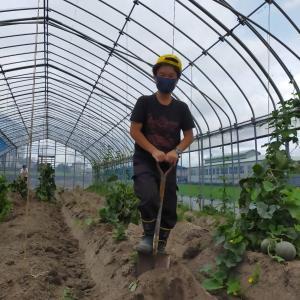 畝崩し、地域貢献型農福・地福連携請負作業など