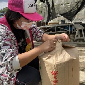 米ぬか回収、地域貢献型農福連携請負作業など