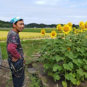 除草作業、地域貢献型農福連携請負作業など