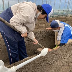 畝の整地作業、地域貢献型農福連携請負作業など