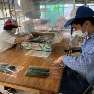 地域貢献型地福・農福連携請負作業 野菜パック詰め など