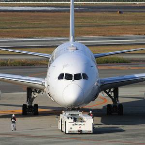 JAL B787-8(JA830J)