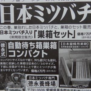 箱以外は5万円ってことです♪クープラン/蜜蜂
